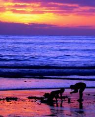 Cotton Candy Sunset, San Diego, California