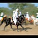 tent pegging by KamiSyed.