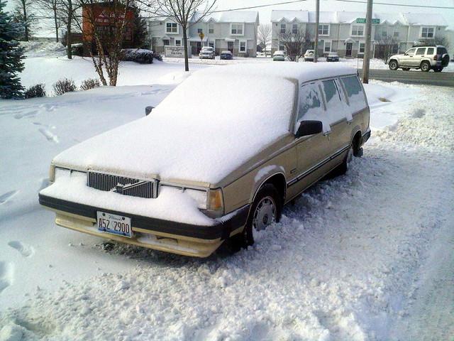 Fuck winter