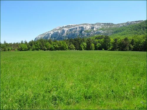 saintebaume montagne mountain hostellerie champ campo verde vert field green provence var france explore ringexcellence pantchoa françoisdenodrest