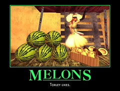 MELONS: Torley likes.