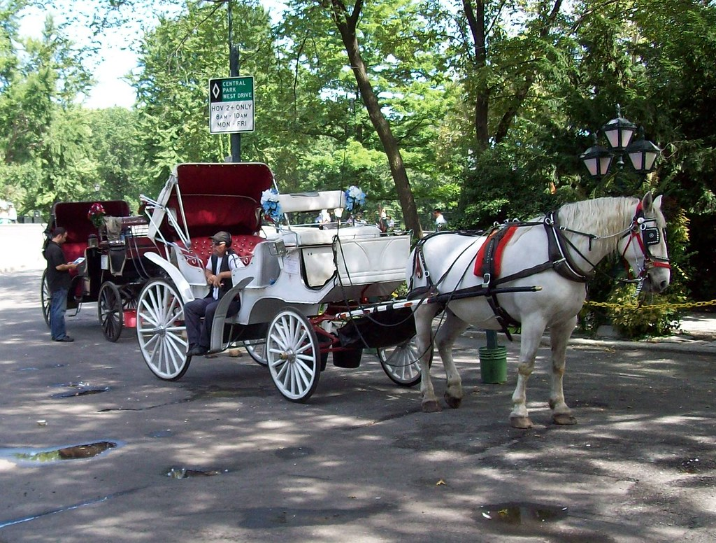 nyc central park horse drawn carriage a photo on flickriver. Black Bedroom Furniture Sets. Home Design Ideas