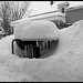 Winter in Traverse City
