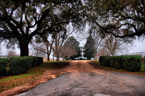 farm southcarolina manor monticello plainviewfarm