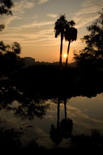light sun reflection silhouette sunrise orlando darkness lakeeola