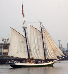 ship of the line, sail, sailboat, sailing ship, schooner, vehicle, ship, trabaccolo, windjammer, training ship, mast, lugger, galeas, sloop-of-war, caravel, tall ship, watercraft, boat, brig, brigantine,