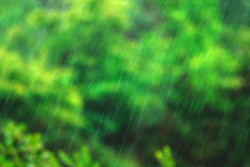 Rain rain rain rain rain...