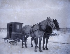 Rural Letter Carrier in Sleigh by Smithsonian Institution