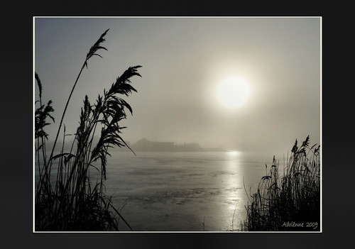 ice sunrise thenetherlands foggymorning myhometown terneuzen explored adriënne otheensekreek panasonicdmctz5 addyvanrooij