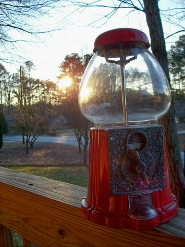 wood sunset sun glass leaves metal jar grains bubblegum