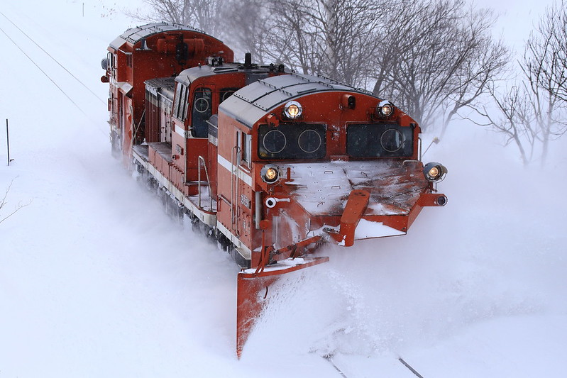 DE15 2511 Snowplow Train