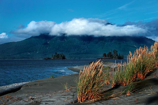 Whaler Island Beach