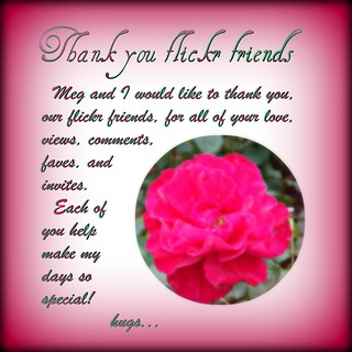 Thank you flickr friends