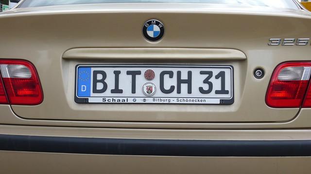 Bitch 31