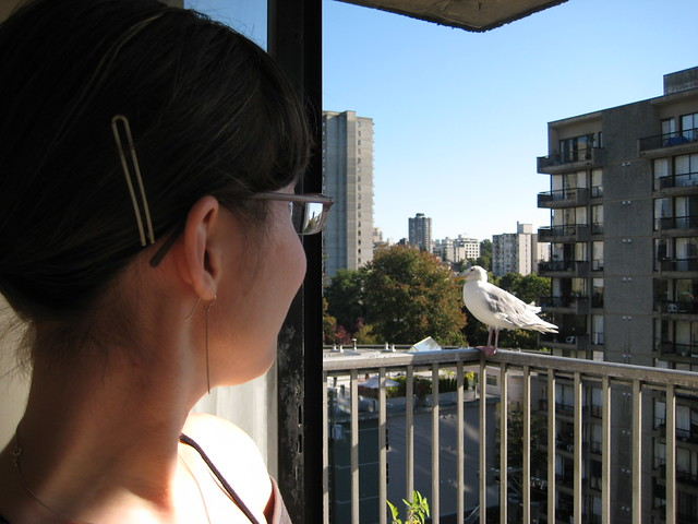 Me and my seagull friend.  I like him a lot the days he dosesn't crap on my balcony.