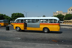 flxible new look bus(0.0), luxury vehicle(0.0), automobile(1.0), vehicle(1.0), transport(1.0), mode of transport(1.0), public transport(1.0), minibus(1.0), school bus(1.0), tour bus service(1.0), land vehicle(1.0), bus(1.0),