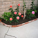 Brick lined garden planter
