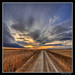 Forever - HDR by James Neeley
