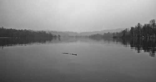bw water misty cove calm kennebecasis