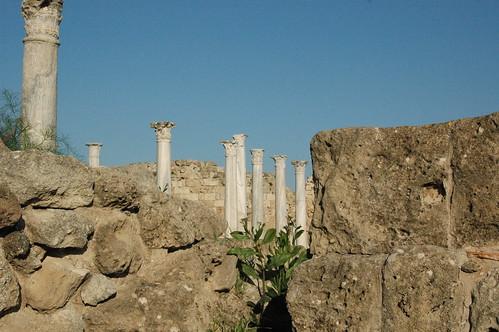 salamina occupiedcyprus cyprus archaelogy greek ancientsite famagusta ammohostos kingevagoras turkishinvasion ruins salamis σαλαμίνα σαλαμίσ κύπροσ αρχαιολογία αρχαιολογικόσχώροσ αμμόχωστοσ κατεχόμενα κατοχή