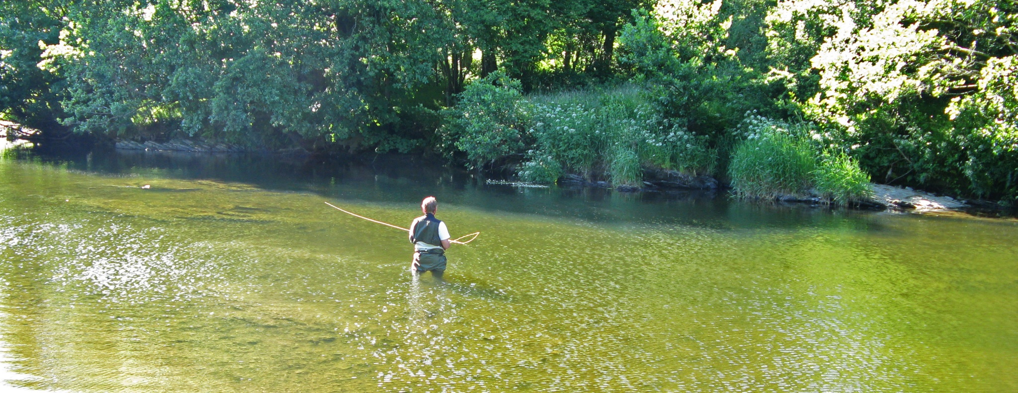 Fly fishing the river teifi fishing sea trout at night for Trout fishing at night