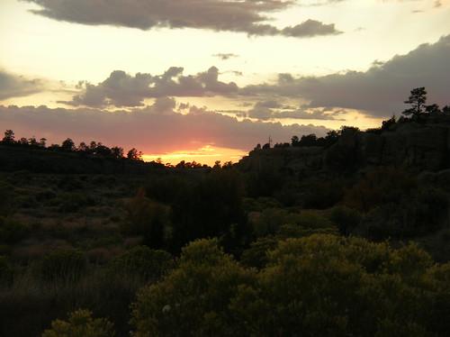sunset plants chamisa