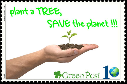 Essay on save trees for green earth
