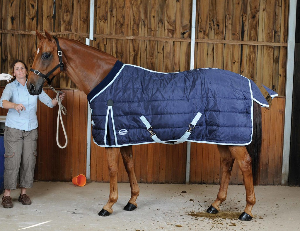 Cool Stable Rug