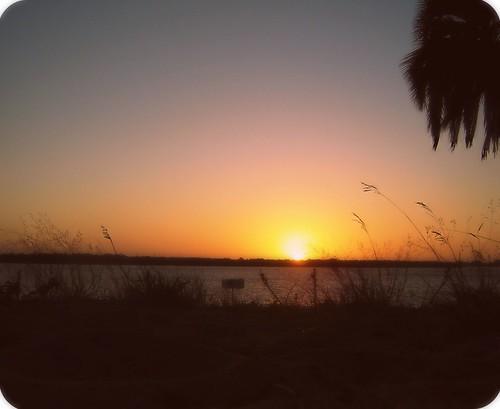 sky sun sol argentina sunrise explore amanecer cielo otoño dreamy mybirthday entrerios micumpleaños ♪ colón amaneciendo inspiredbylove 20dejulio lovethissong july20th felizdiadelamigo hoynomeimportasiestátorcidoelhorizonteja imgettingolderiknow meencantaestacancion momentobeatle