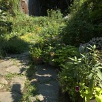 St. Mark's Avenue Community Garden