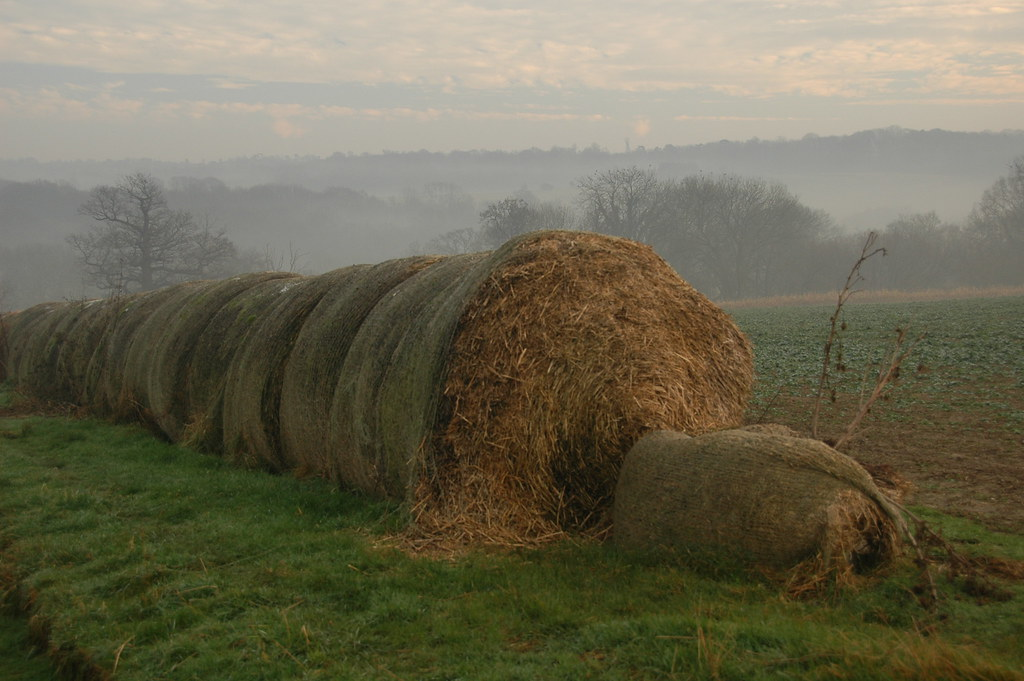 Hever to Leigh Taken in mid winter - hay spilling out of a sack