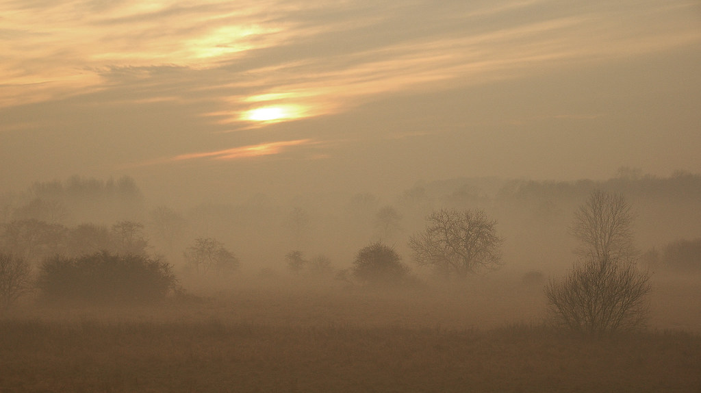 Hever to Leigh Trees in the mist near Penshurst just before sunset