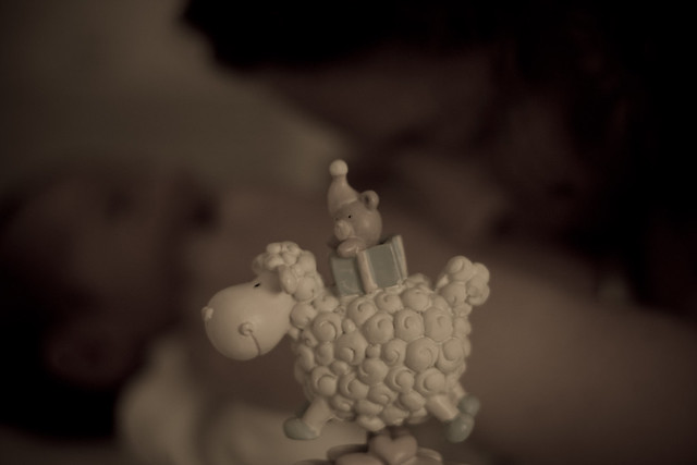 Noa, Hila and the Musical Italian Sheep