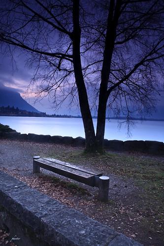 morning tree sunrise bench geotagged switzerland chillon lakegeneva montreux veytaux geo:lat=46412476 geo:lon=6929884
