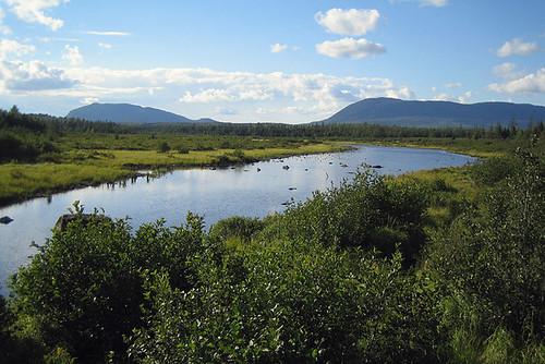 mountain water maine bog