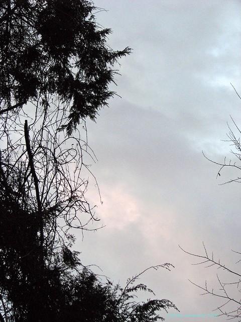 2008-02-27 clouds