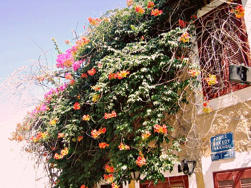 Vakhou Street