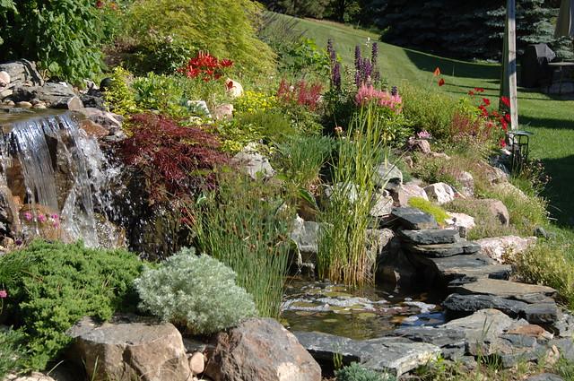 Backyard Waterfall And Rock Gardens 0302 Flickr Photo