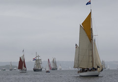 sail, sailboat, sailing ship, schooner, sailing, sailboat racing, vehicle, sailing, sports, sea, windjammer, thames sailing barge, mast, wind, lugger, tall ship, watercraft, boat, brig, brigantine,