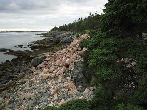 Acadia 184
