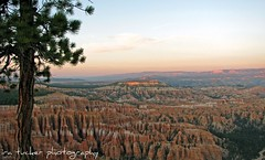 bryce canyon, zion national parks