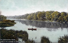 Des Plaines River - Western News Company Card