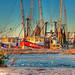 Small photo of Mayport Ships Shrimp