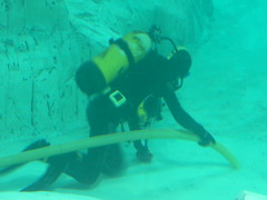 underwater diving, sports, recreation, outdoor recreation, marine biology, scuba diving, underwater sports, divemaster, water sport, underwater,