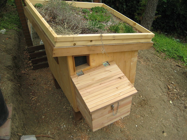 Nest box addition on the coop