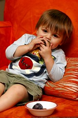 eating his first plum    MG 1391