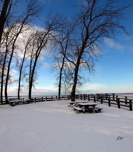 trees winter sky snow beach nature landscape photography pennsylvania boardwalk erie penninsula picnictable presqueisle presqueislestatepark kweaver2 olympuse520 kathyweaver
