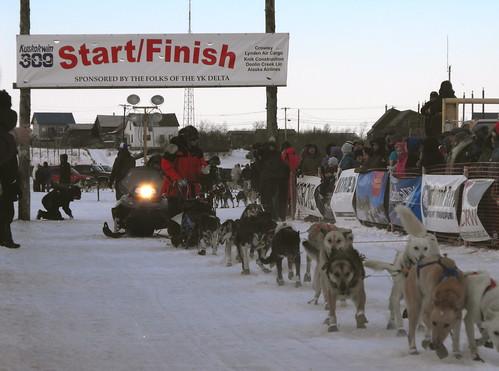K300 dog team