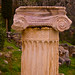 Small photo of Ionic Column
