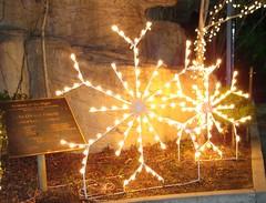 snowflake-lights